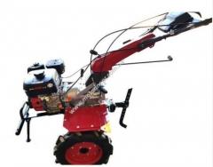 Бензиновый мотобдок WEIMA WM 1100 С 6 KM DIFF,  4+2 скорости, бенз 7,0л.с.,ручной стартер,  4,00-10
