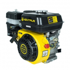 Бензиновый двигатель Кентавр ДВЗ-210Б 1